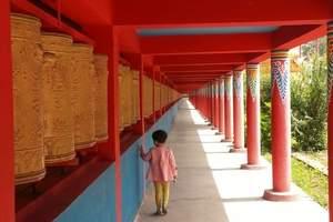 青海藏传佛教圣地朝觐六日游