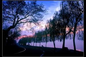 苏州到杭州西湖-灵隐飞来峰-虎跑泉-西溪湿地2日游