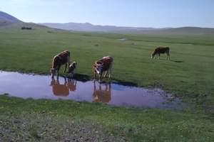 长春到《狼图腾》拍摄地 天边草原——乌拉盖4日游