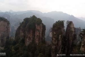 萍乡出发到张家界森林公园纯玩三日游_跟团去张家界旅游多少钱