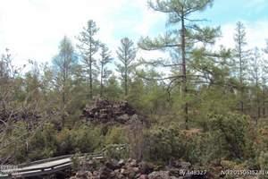 興安盟石塘林