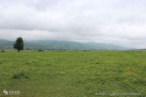 伊犁伊宁出发到那拉提大草原、赛里木湖二日汽车跟团周边游