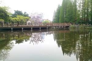 青岛+日照双汽四日游 青岛旅游线路  纯玩线路