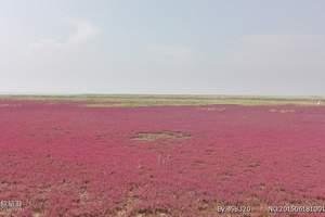 北京到红海滩旅游��兴城��滦州古城双汽摄影二日游