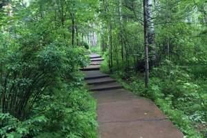 伊春一日游:伊春五营森林公园+汤旺河石林一日游