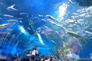 蓬莱长岛旅游 海洋极地世界+长岛渔家乐二日游 亲子纯玩团