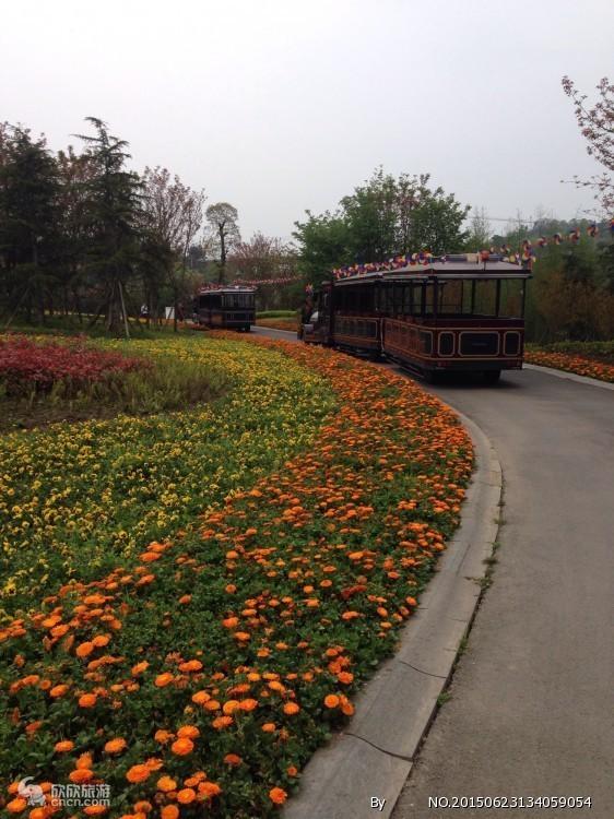 长寿湖小火车