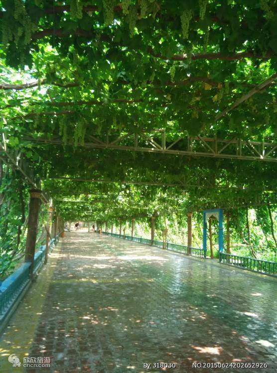 新疆吐鲁番(L线)鄯善高铁三星品质二日游