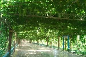 葡萄沟-吐鲁番旅游首选景点