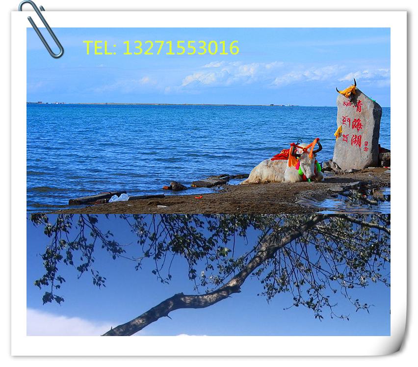 青海湖互助攻略_郑州到塔尔寺旅游青海湖茶卡攻略逃脱安卓密室图片