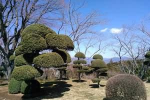 青岛到日本自由行五日游 含机票+日本签证 去日本多少钱