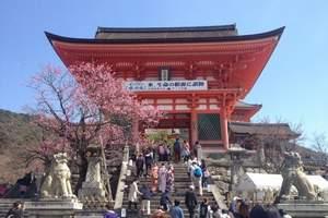 秋の恋歌《恋恋北海道》日本一地浪漫六日之旅 - 济南山航直飞