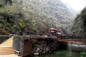 三峡大瀑布半日游 纵览高峡平湖 体验三峡文化