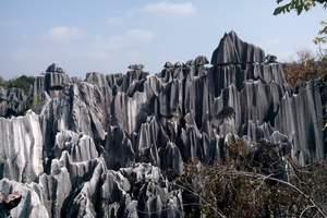 云南旅游景点 兰州到昆明 大理 丽江 版纳9日游 至尊旅程