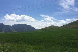 【自由行】南山牧场、乌拉斯台包车一日(2人起订)