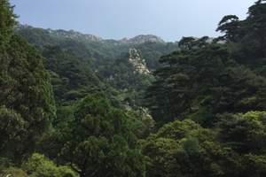 【秦皇岛到泰山旅游】泰山+红叶谷+地下龙宫3日游-每周五发