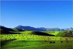 国家旅游局局长李金早:助推新疆旅游实现新跨越