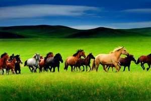 长沙到内蒙古呼伦贝尔大草原双飞往返7日游