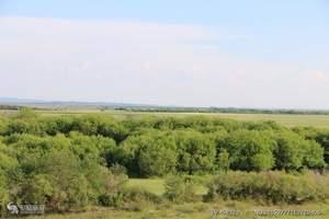 内蒙古呼伦贝尔草原、满洲里口岸、室韦、额尔古纳湿地六日游