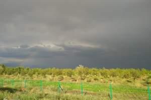 新疆到乌鲁木齐天山天池、吐鲁番、库木塔格沙漠 5日游