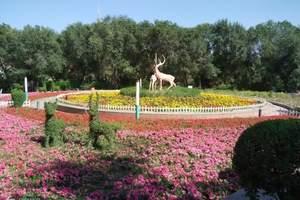 银川到新疆乌鲁木齐、吐鲁番、天池、喀纳斯8日游
