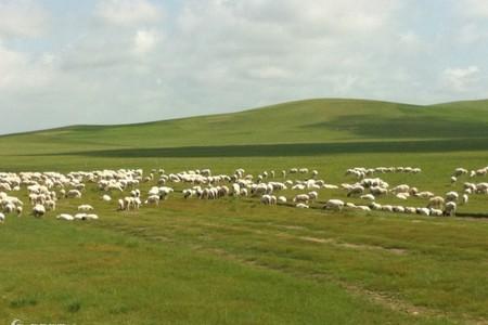 天邊草原--純美烏拉蓋深度3日游