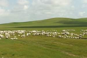锡林郭勒草原 一日游
