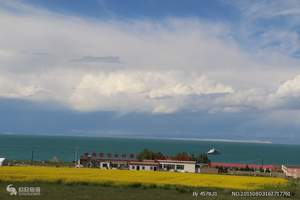 西宁到塔尔寺、青海湖一日游   纯玩无购物 无自费