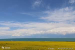 长沙到青海双飞六日游,青海湖+鸟岛+塔尔寺+金银滩草原