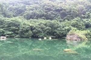 太原到云台山、响水河、五龙山欢乐世界、野生动物园三日游
