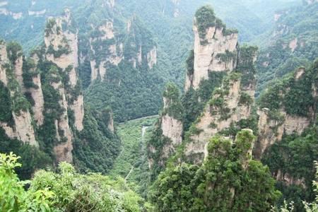 洛阳到家界国家森林公园(袁家界、天子山、金鞭溪)黄龙洞四日游