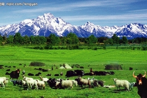 库布其沙漠+希拉穆仁草原+露天温泉3日 太原到内蒙旅游线路