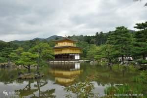 泰安去日本东京、富士山、箱根、大阪本州豪华6日游 五星住宿