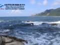 珠海至新会船游体验升级小鸟天堂一天游0756-2618486