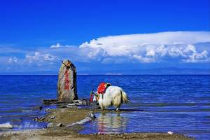 从呼和浩特到兰州、敦煌、嘉峪关、青海湖、塔尔寺四卧8日游