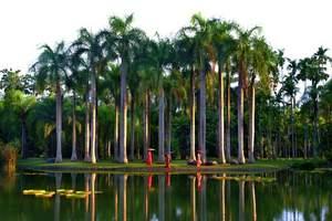 西双版纳中科院热带植物园+傣族园一日游
