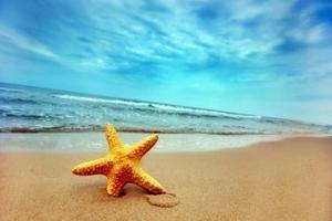 海口到三亚分界洲岛经典三日游包含南山寺、天涯海角、玉带滩