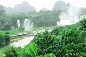 德天瀑布、巴马百魔洞、百鸟岩、长寿村三日游|南宁周边品质游