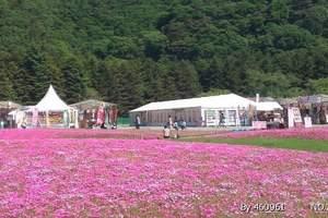 青岛到日本旅游_北海道全景6日游—花恋北海道