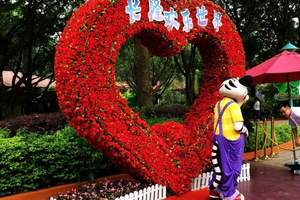 广州旅游推荐_重庆到广州长隆动物世界、海陵岛双飞五日游