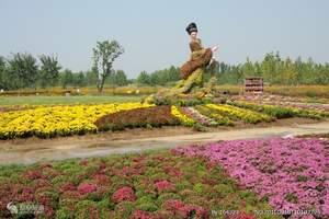 天津到北京国际鲜花港旅游团、菊花文化节、大运河森林公园 一日