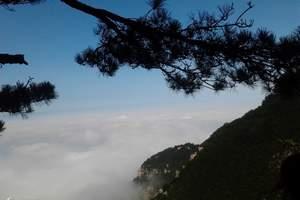 泉州到江西旅游推荐线路||庐山、三叠泉、东林大佛双动3日游