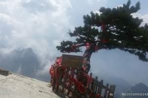 【华山纯玩一日游】,索道西峰上北峰下,轻松旅行无购物无自费