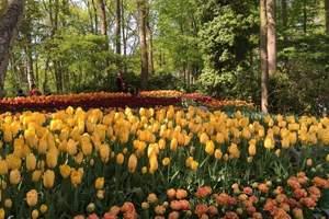 厦门到欧洲旅游_荷法瑞意奥+德国深度库肯霍夫12天赏花之旅