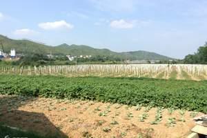 合肥谷米农庄亲子一日游