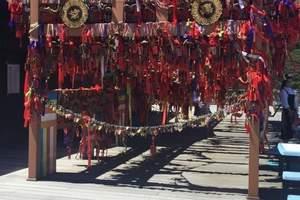 云南旅游去哪玩好 烟台到云南丽江、大西双版纳四飞八日游