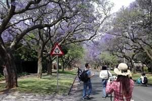 河南到南非旅游多少钱_河南到南非旅游团_郑州到南非一地十日