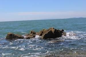 竹岔岛赶海垂钓挖野菜休闲观光一日游|海边捡贝壳休闲 垂钓游