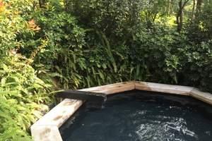 花溪地温泉一日游|花溪地生态温泉|花溪地自驾游 团购票