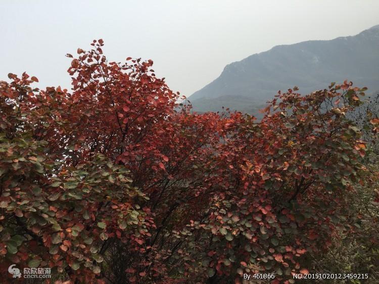 10月21号大鸿寨红叶节 大鸿寨+神垕古镇一日游